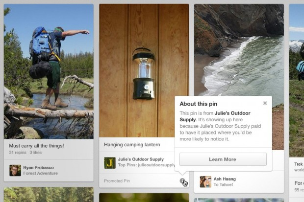 Pinterest Promoted Pin