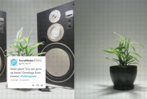 mythbusters talk to a plant twitter experiment