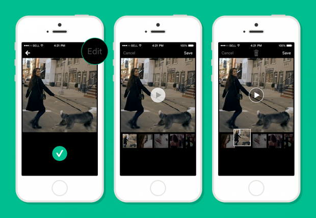 vine time travel feature