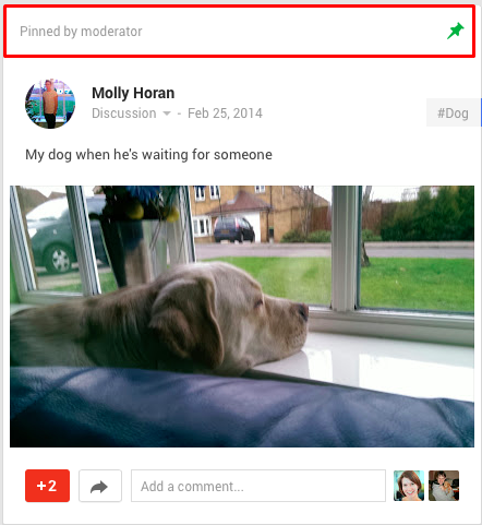 google plus communities pinned post