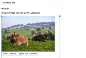 google plus auto backup photos for gmail