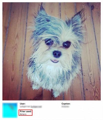 instagram filter fakers