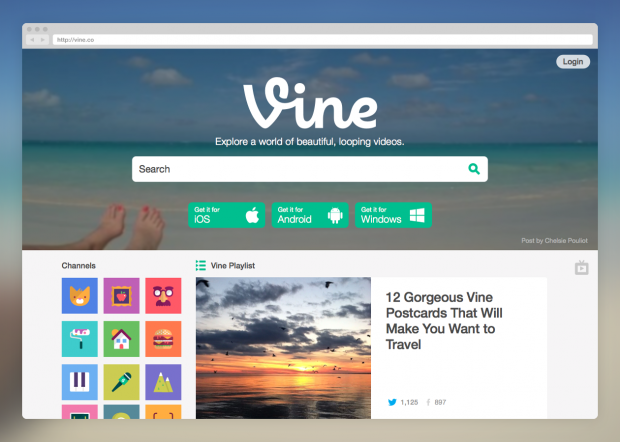 vine new website